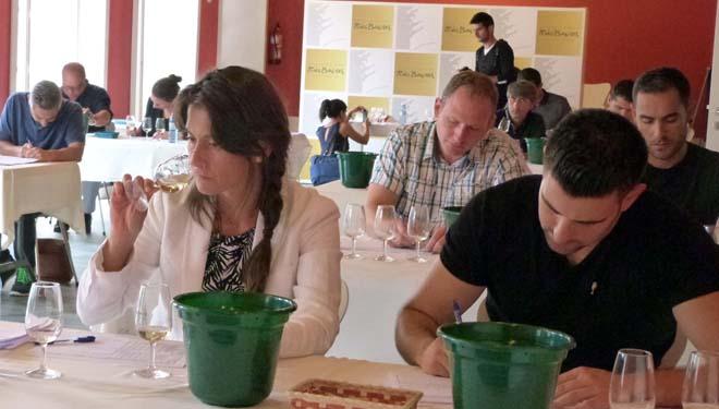 'Gallaecia' avalía 194 viños de Rías Baixas