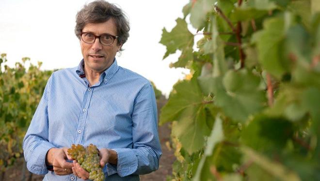 """""""Galicia debería ter unha gran denominación de orixe para os seus viños"""""""