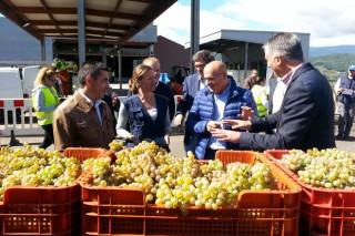 Unións pide que as adegas cumpran os prazos de pago aos viticultores