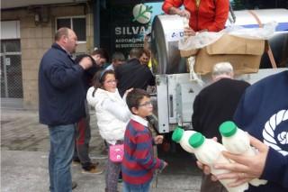 Éxito dos repartos de leite gratis