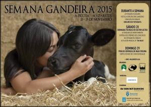 Cartel Semana Gandeira_MAZARICOS