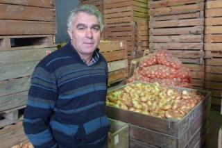 Cooperativa Postoiro, a primeira produtora de cebola e porro de Galicia