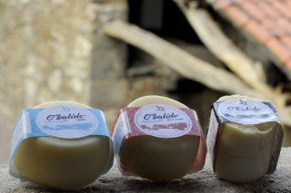 Presentan aos World Cheese Awords o primeiro queixo galego de ovella curado