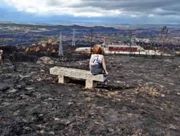 Medio Rural proxecta un plan piloto para recuperar terras agrarias abandonadas