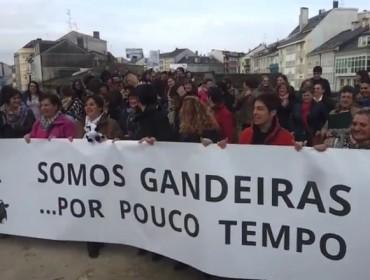 Preto de duascentas gandeiras protestan en Lugo contra os baixos prezos do leite