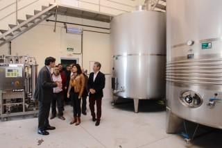 A Xunta convoca as axudas para equipamentos e novas adegas no sector víticola