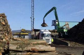 Ence lanza una campaña para primar la madera de más de 30 años