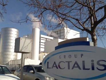 Lactalis prevé superar os 500 millóns de litros recollidos en Galicia no 2018