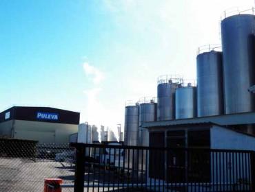 O Grupo Lactalis incrementou arredor dun 2,5% a súa recolllida de leite en Galicia en 2019