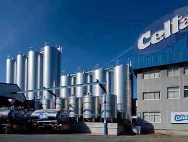 Celta y Lactalis bajan el precio de la leche ecológica en el campo