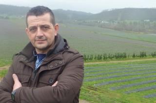 Galicia despega con fuerza en la producción de arándanos