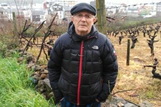 """""""Pedimos á Xunta que incremente un 20% os rendementos de uva autorizados para a D.O. Valdeorras"""""""