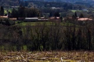 Arredor de 200 granxas de Lugo, en risco de perder axudas pola Lei do Solo