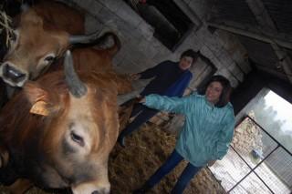 A Xunta destina este ano 20 millóns para fomentar o pastoreo e a gandería extensiva en zonas con limitacións