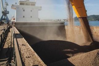 Biomasa Forestal, el pellet con valor de marca