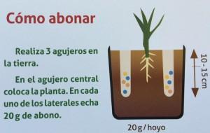 grafico abonado eucalipto