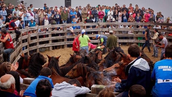 'Rapa das bestas', un evento festivo que se celebra cada verano en O Carballo.