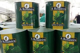 A Rosaleira, grelos de Galicia que saben como os da casa