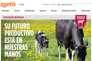 """""""Especialistas en Novillas"""" culmina os seus seminarios online 2020 coa participación de preto de 1.800 profesionais"""