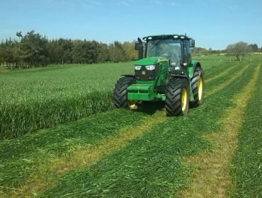 En 2016 volvió a bajar la calidad de los ensilados de hierba en Galicia