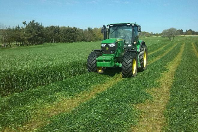 En 2016 volveu baixar a calidade dos ensilados de herba en Galicia