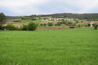 Xornada sobre a incidencia no agro da Lei do Solo de Galicia