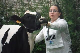 """""""Hay mucho que mejorar en el manejo de las vacas secas en Galicia"""""""