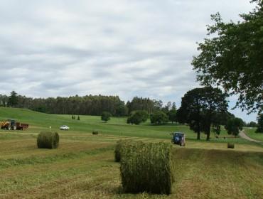 Top–30 dos perceptores galegos de fondos agrícolas europeos