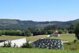 Preguntas e respostas sobre as axudas do pago verde en Galicia