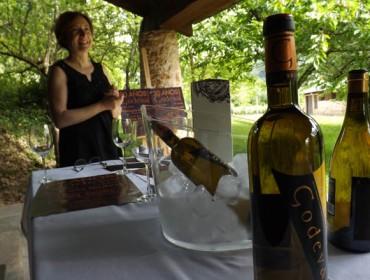 Elaboración de vinos criomacerados: dos experiencias en Galicia