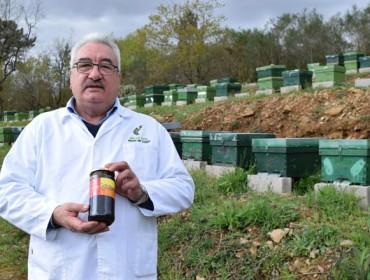 Mieles Anta asina contratos con apicultores galegos a entre 3 e 5 anos