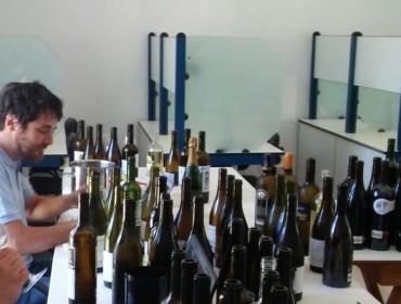 """O director da Guía Peñín salienta que """"Valdeorras camiña cara a viños de excelente calidade"""""""