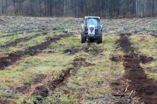 O Centro de Formación Forestal de Lourizán programa 12 cursos e obradoiros para este outono