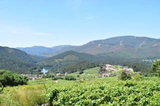 Iniciativas de xestión conxunta da terra no Ribeiro