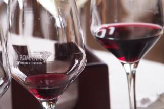 Redúcense a dúas as declaracións obrigatorias para os pequenos viticultores