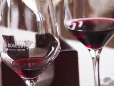 Se reducen a dos las declaraciones obligatorias para los pequeños viticultores