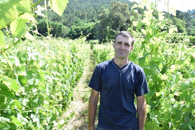 """""""Intento volver á viticultura que se facía no Ribeiro cara o ano 1800"""""""