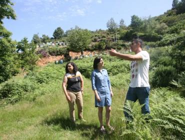 A Xunta anuncia un incremento dun 16% nas axudas para a apicultura