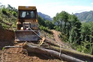 La introducción del cable sintético reduce la dureza de los trabajos forestales