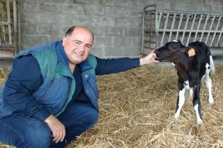 """""""A Galicia fáltalle representación nas institucións europeas onde se decide o futuro do sector lácteo"""""""