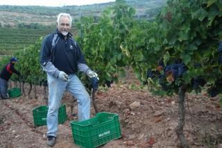 Adega Roandi: viños rosados e espumosos dende as ladeiras de Valdeorras