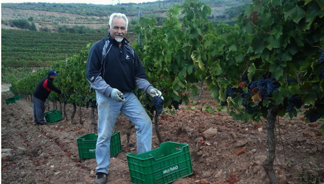 Bodega Roandi: rosé and sparkling wines from the slopes of Valdeorras