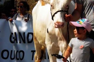 O agro mide forzas ante a crise do leite