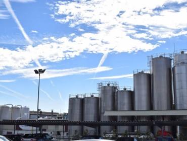Galicia pecha o último ano cun aumento da produción de leite do 2,3%