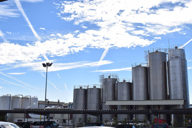 Galicia cierra el último año con un aumento de la producción de leche del 2,3%