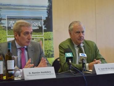Rías Baixas logra unha das súas mellores vendimas con 33 millóns de quilos de uva