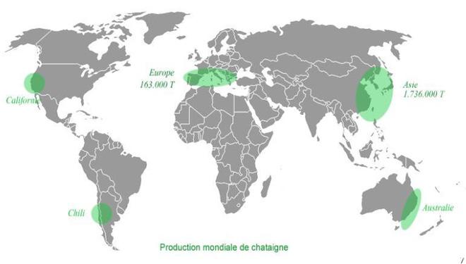 Principais zonas de produción mundial de castaña. / Imaxe: E. Bertoncello.