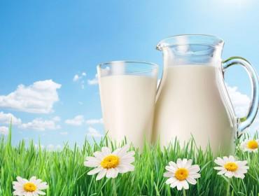 Xornada de apoio ó consumo de leite fresco