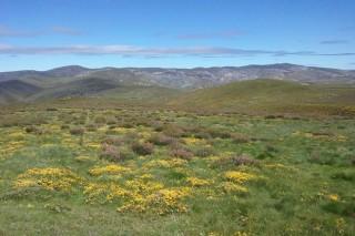 Conflicto en Vilariño de Conso por una ruta de motos por el monte