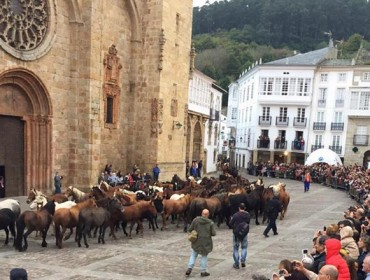Programa da feira e concurso cabalar das San Lucas de Mondoñedo